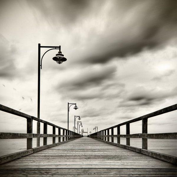 Seebrücke mit Möven