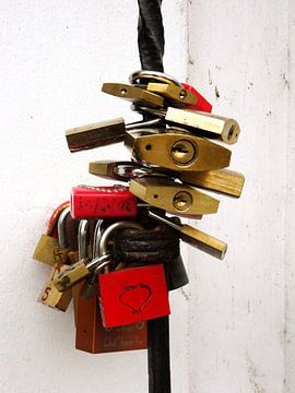 Lovelocks van Ton van Buuren