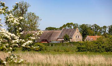 Farm Roode Hoeve dans le Zak van Zuid-Beveland sur Percy's fotografie