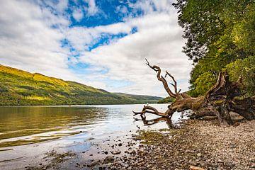 Schotland Loch Lomond 1 van Freddy Hoevers