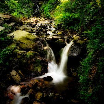 Wasserfall von Joost Lagerweij