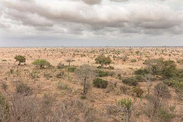 Landschap Zuid-Afrika von Riana Kooij