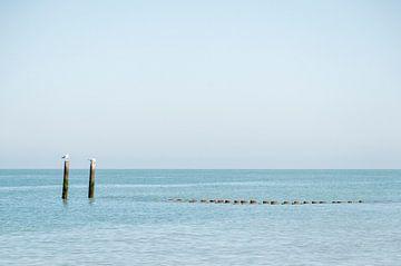 Zeelands Küste in Frieden von Studio Bosgra