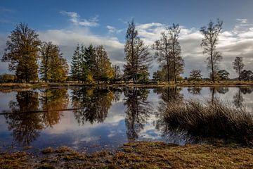 Appelscha im November von Rolf Linnemeijer