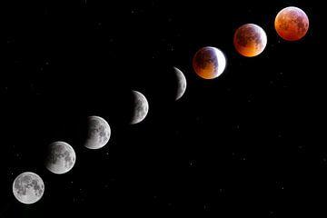 Bloedmaan, maansverduistering van Sander van Driel