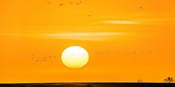 Zonsondergang boven de IJsselmeerdijk van