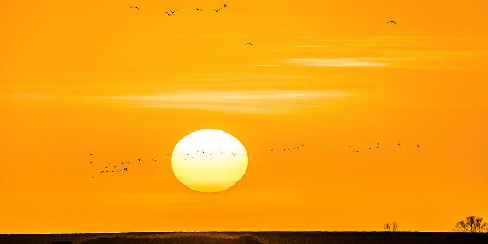 Zonsondergang boven de IJsselmeerdijk