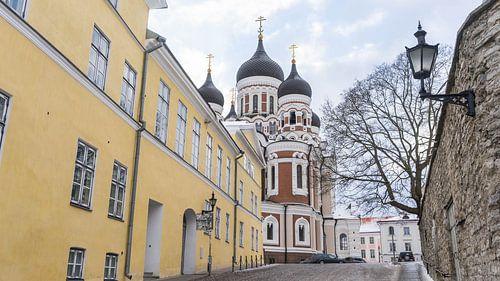 Kathedraal in straatbeeld in Tallinn, Estland