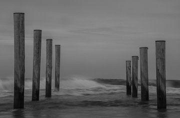 Wellen von Maarten van Roozendaal