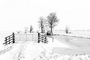 Winter in de Alblasserwaard: polderlandschap in zwart-wit van Beeldbank Alblasserwaard
