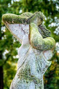 Groen mos tuinbeeld