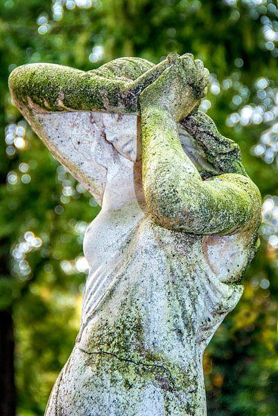 Groen mos tuinbeeld van Marly De Kok