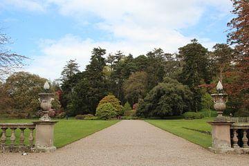 Tuin, Garden, Ierland sur Tineke Roosen