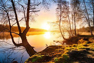 Dromerige zonsopgang in de natuur