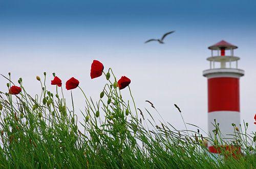 Summer romance op zee van Tanja Riedel