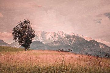 Einsamer Baum von Geert-Jan Timmermans