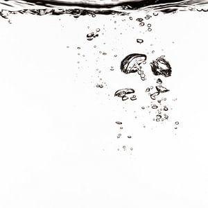 Lucht vliegt in het water van Andreas Hackl