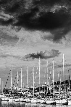 Segelboote im Hafen von Saint-Tropez von Tom Vandenhende
