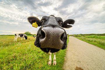 Happy Life - Fröhliche Kuh von Ellen van den Doel