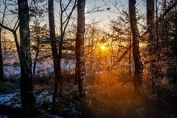 Sonnenaufgang bei 't Leesten von Ellis Peeters