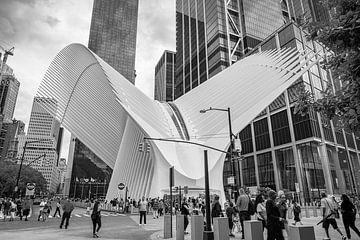 Oculus, New York