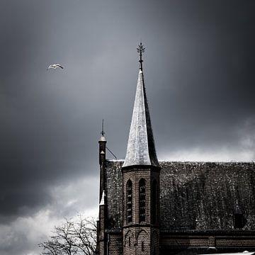 De meeuw en de kerk van Jeroen