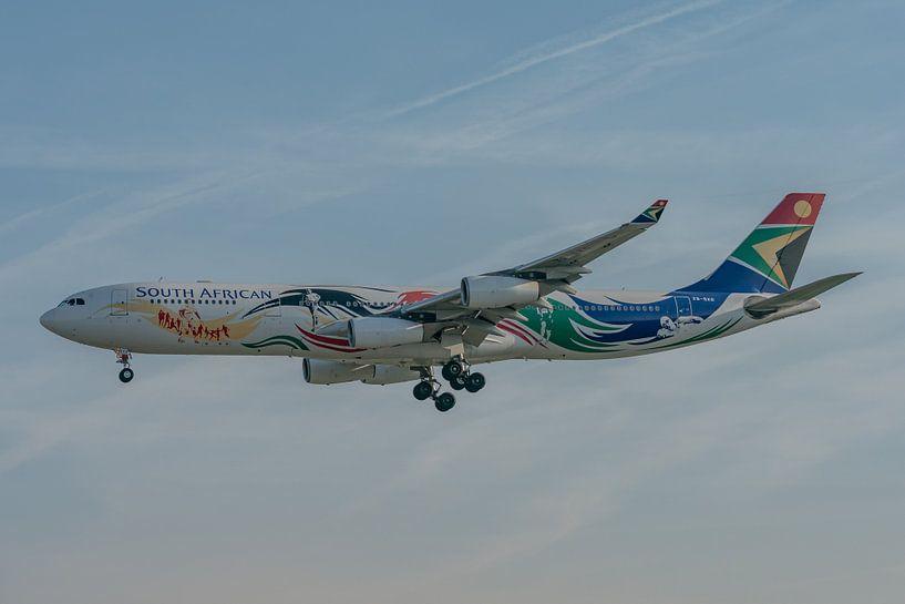 Un avion de ligne Airbus A340-300 coloré de la compagnie South African Airways en train d'atterrir à sur Jaap van den Berg