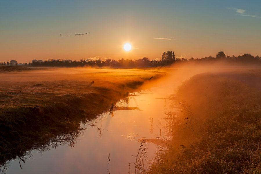 Polder ontwaakt in warme herfstzon van Marc Vermeulen