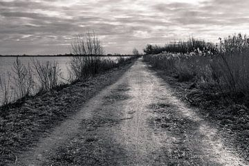 The Road to Nowhere von Serge Sanramat
