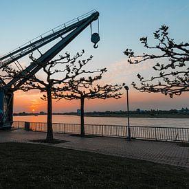 Der alte Hafen von Düsseldorf von Martijn Mureau