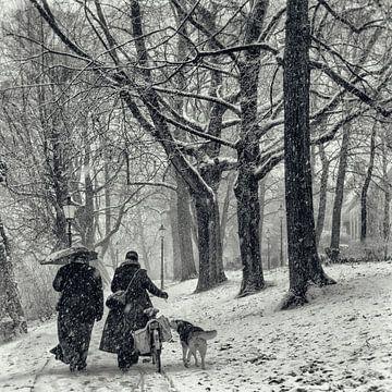 Neige de décembre sur Tvurk Photography