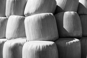 balen von Arno Photo