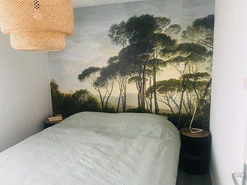 Kundenfoto: Italienische Landschaft mit Schirmpinien, Hendrik Voogd