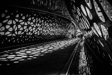 Parkbrücke Antwerpen von Bruno Hermans