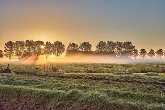 zonsopkomst in de polder met nevel