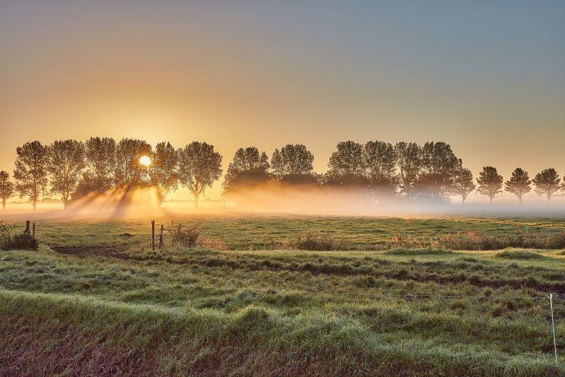 zonsopkomst in de polder met nevel van eric van der eijk