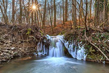 Kleine waterval in het winterbos van