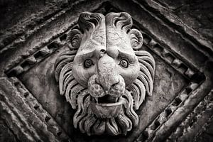 Siena Cathedral (Detail)
