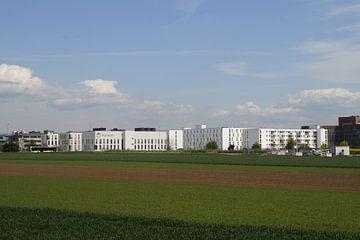 White Houses Green Fields von Dennis Meißner