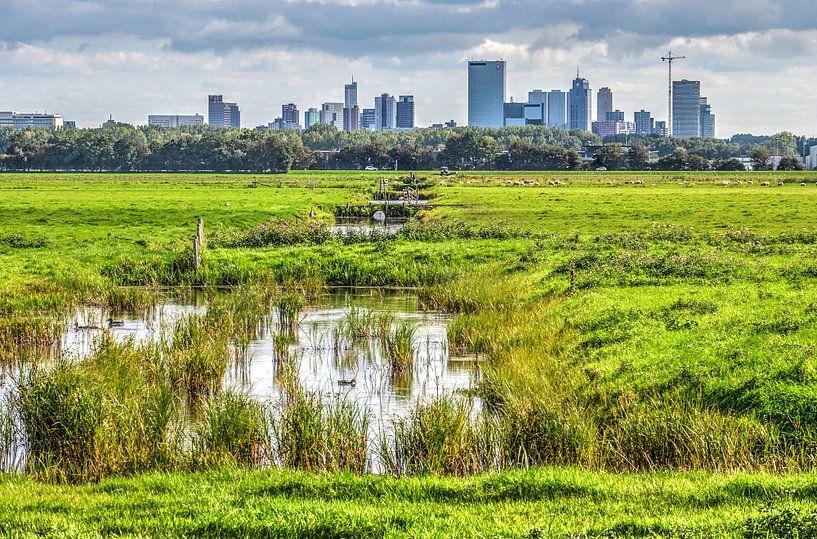 Rotterdam vanuit de polder van Frans Blok