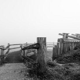 Palendijk in de mist van Felix Sedney