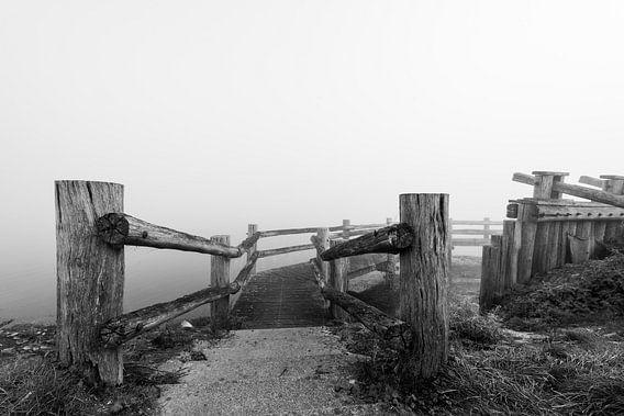 Palendijk in de mist