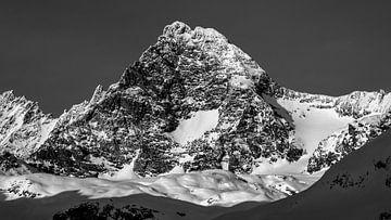 Großglockner vom Ködnitztal aus gesehen - Osttirol - Österreich