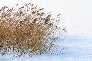 Minimalistisch winters landschap
