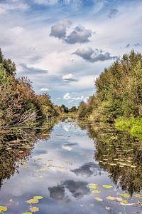 Landschap in De Deelen nabij Oldeboorn-Friesland