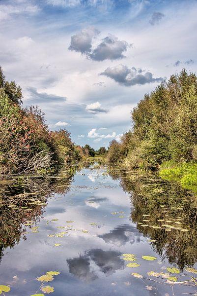 Landschap in De Deelen nabij Oldeboorn-Friesland van Harrie Muis