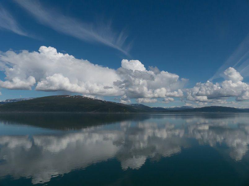 Weerspiegeling Ranfjord Noorwegen van bird bee flower and tree