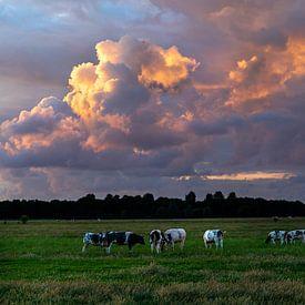 Zomers landschap foto van koeien in de polder met prachtige wolkenlucht. van Eyesmile Photography