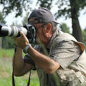 Dietmar Wolf Profilfoto