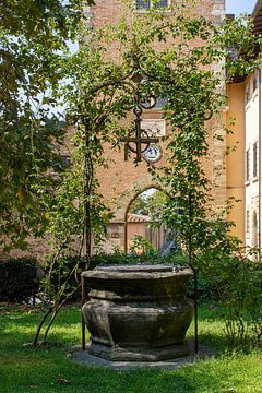 Italiaanse waterput in Bolgheri van Mark van Harlingen